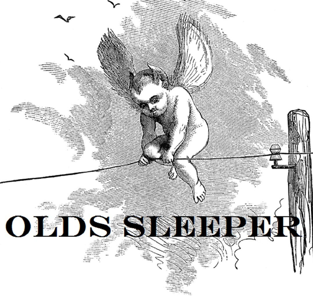 New Year\'s Poem   Olds Sleeper