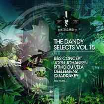 VA - The Dandy Selects Vol. 15 cover art