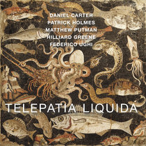 Telepatia Liquida cover art