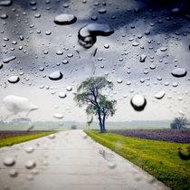 331 Summer Storm cover art