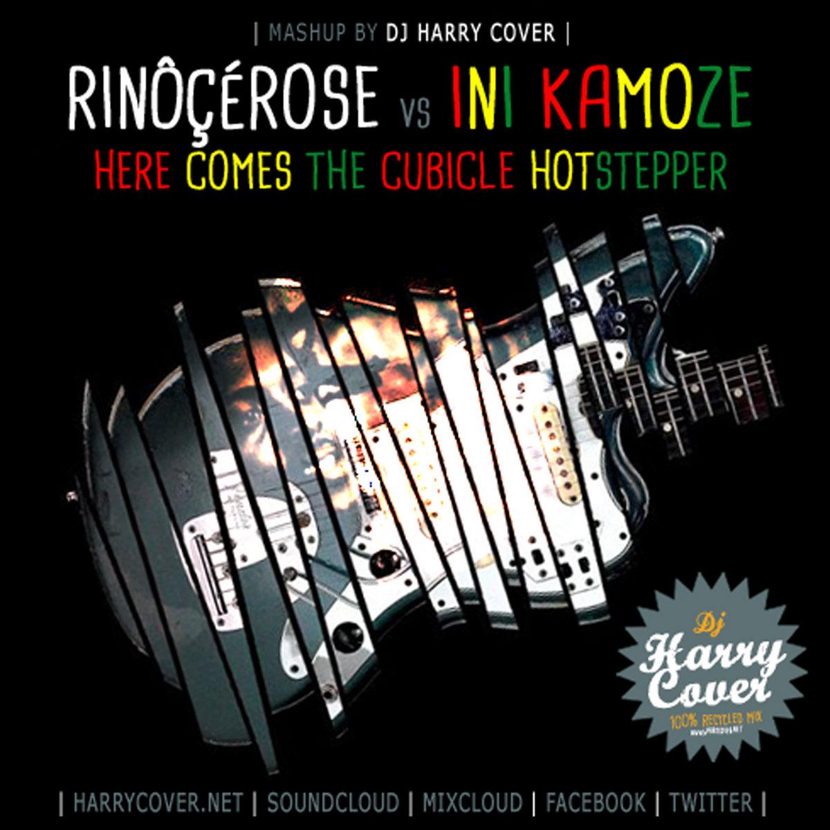 rinocerose cubicle