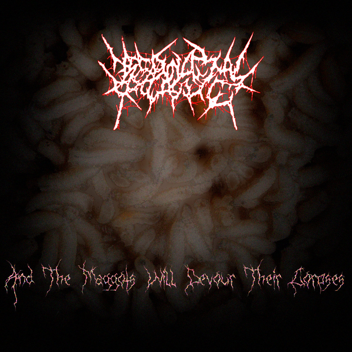 https://necrovaginalprolapsing.bandcamp.com/album/and-the-maggots-will-devour-their-corpses