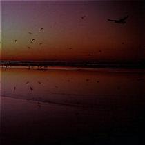 69 Beaches cover art