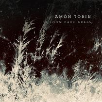 In Long Dark Grass cover art