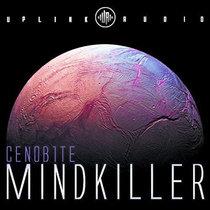 MINDKILLER [BLUSH_RESPONSE REMIX] cover art