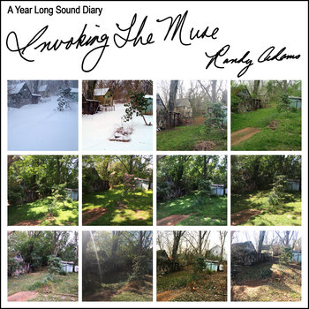 Invoking The Muse - A Year Long Sound Diary by Randy Adams