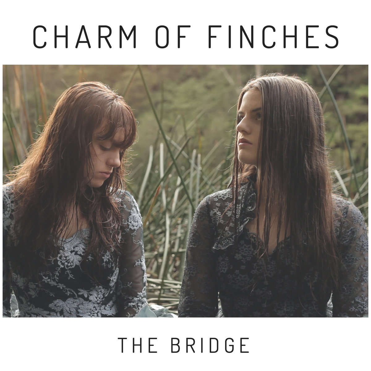 The Bridge by Charm of Finches