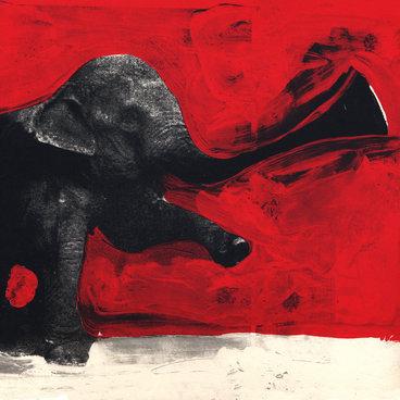 Elephant RMX main photo