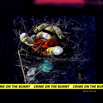 Crime On The Bunny (Single) by David Kollar