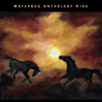 waterbug anthology 9 cover art