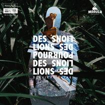 Derviche Safari cover art