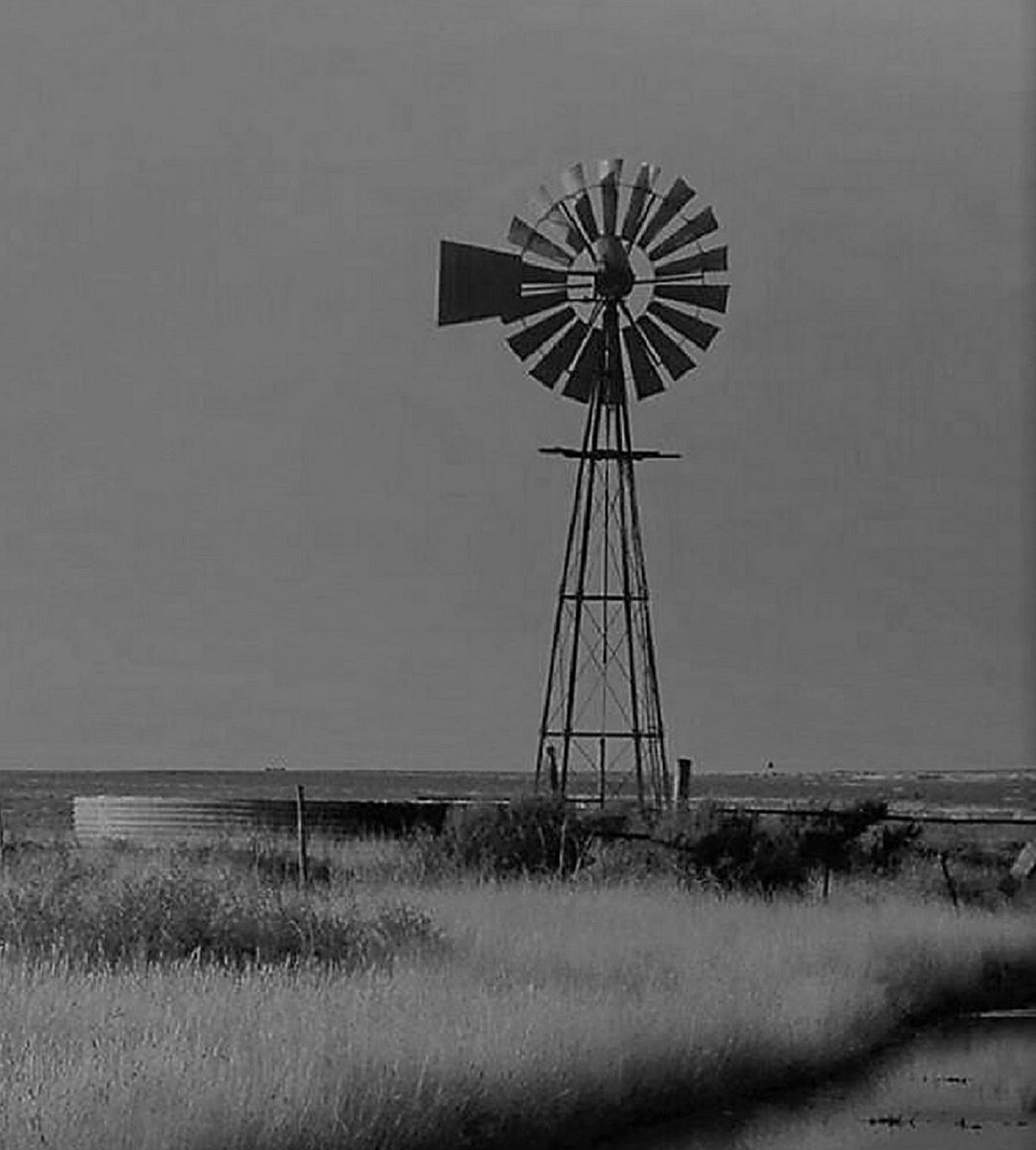 Windmills and Waterholes by Don Berryhill