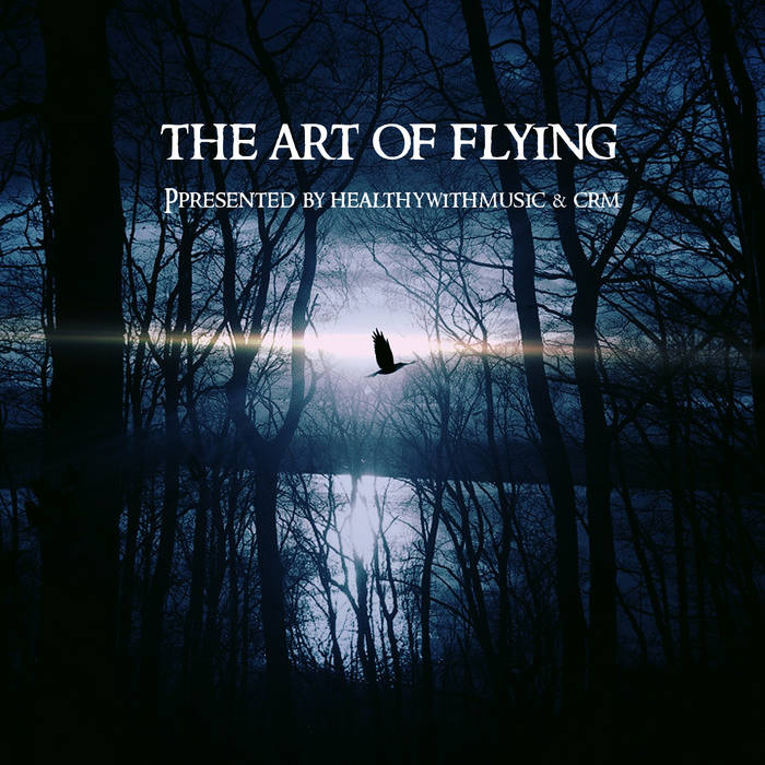 The Art of Flying Image