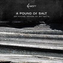 A Pound Of Salt cover art