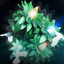 Birds cover art