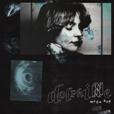 Dolphine main photo