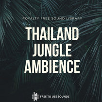 Royalty Free Jungle Sounds After Midnight! Thailand cover art