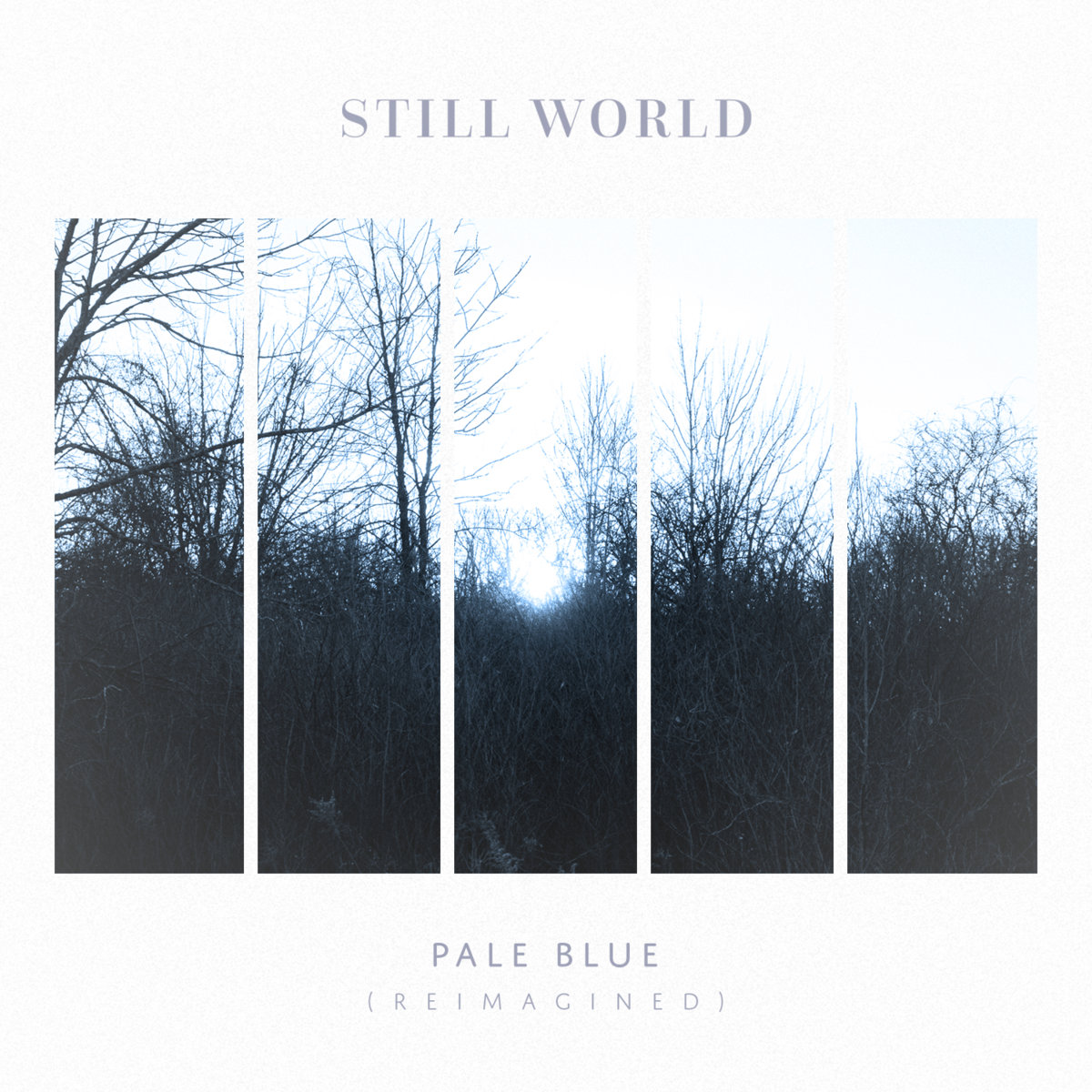 Pale Blue (Reimagined) by Still World