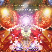 Harmonic Module cover art