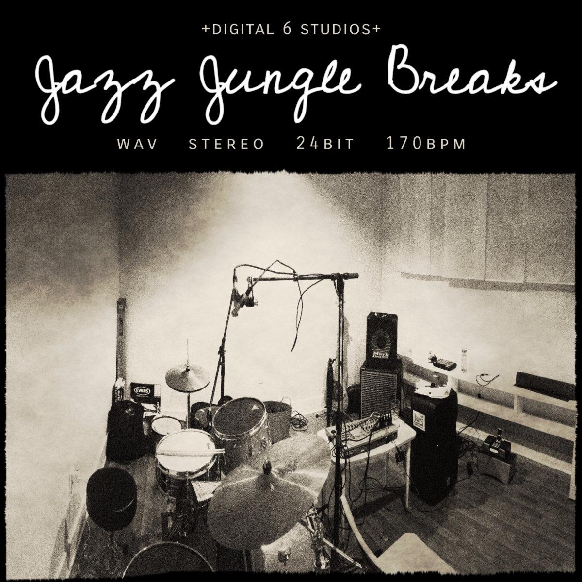 Jazz Jungle Breaks | 6Blocc