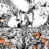 Last of the Acid Cowboys Cover Art