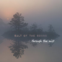 Through The Mist cover art