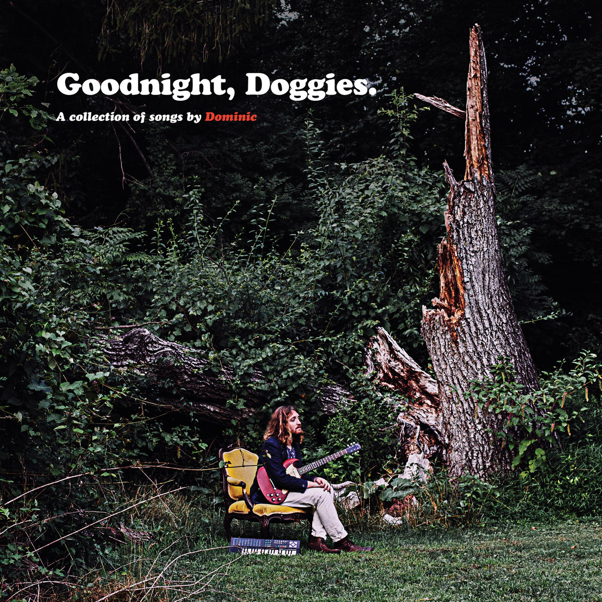 Image result for Dominic: Goodnight, Doggies. album art