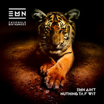 EMN Ain't Nuthing Ta F' Wit cover art