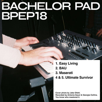 Music   Bachelor Pad
