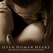 Open Human Heart cover art