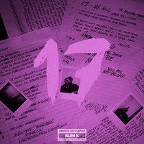17 (Chopped Not Slopped) cover art