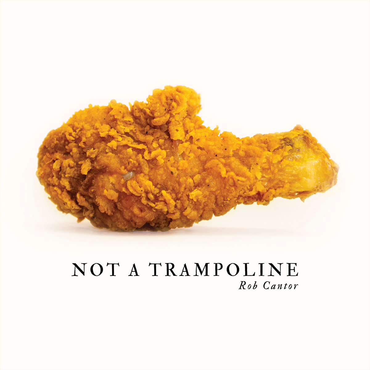 The cover of Not A Trampoline. It is a pristine photo of a chicken nugget.