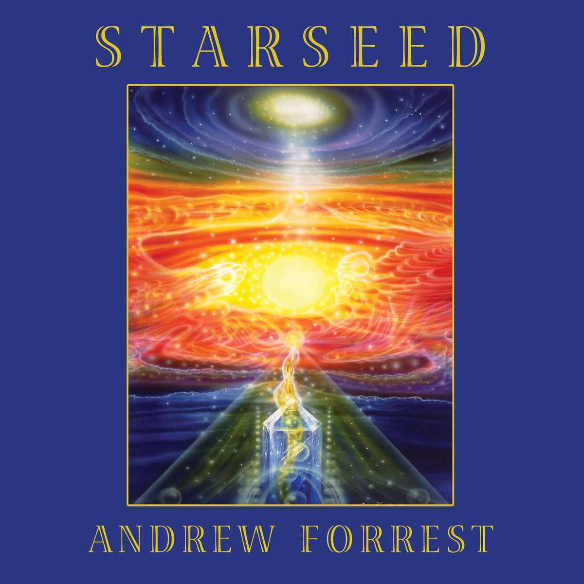 Starseed | Andrew Forrest