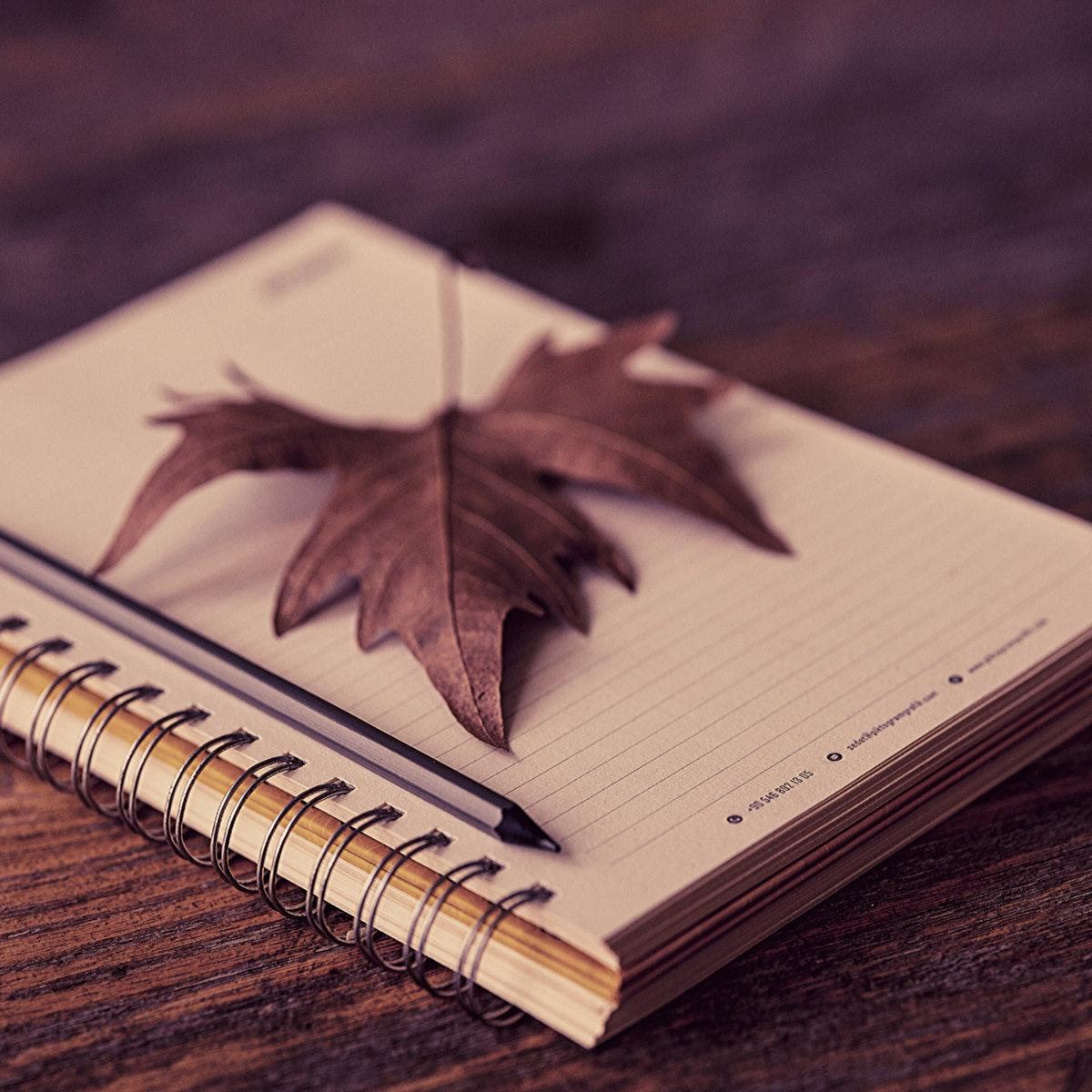 Autumn's Diary ft. Taiyo Ky by U'nique Music