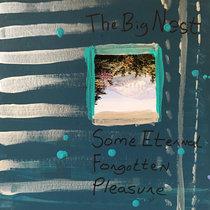 Some Eternal Forgotten Pleasure cover art