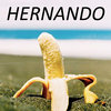 Hernando Cover Art