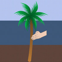 Karate Palm Tree cover art