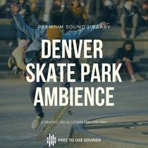 Skate Park Sounds   Denver Skate Board Park Ambience cover art