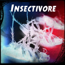 Insectivore cover art