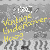 Vintage Undercover Moog cover art