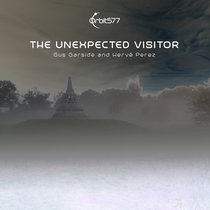 The Unexpected Visitor cover art