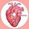 Amor Cover Art