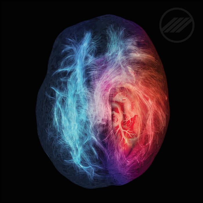 This Is Your Brain On Love cover art