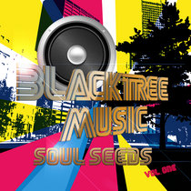 Blacktree Music Presents: Soul Seeds, Vol. One cover art