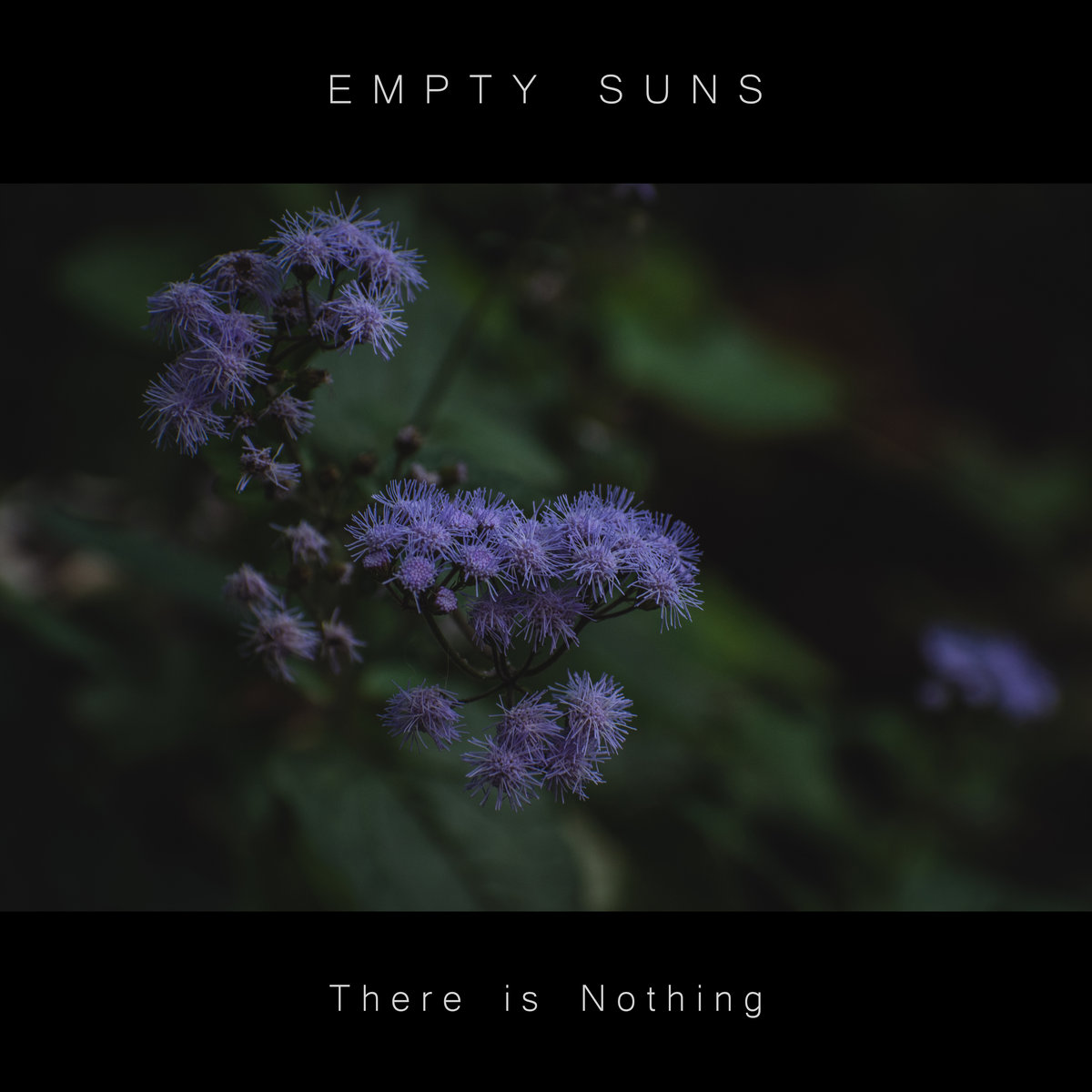 There is Nothing by Empty Suns