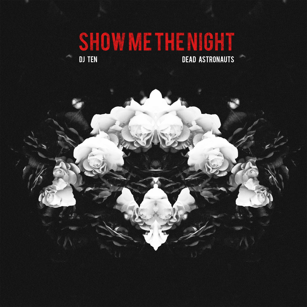778530b4f47e Show Me The Night (feat. Dead Astronauts) [Single]   DJ Ten