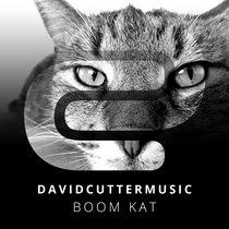 Boom Kat cover art