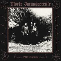 Vala Comum cover art