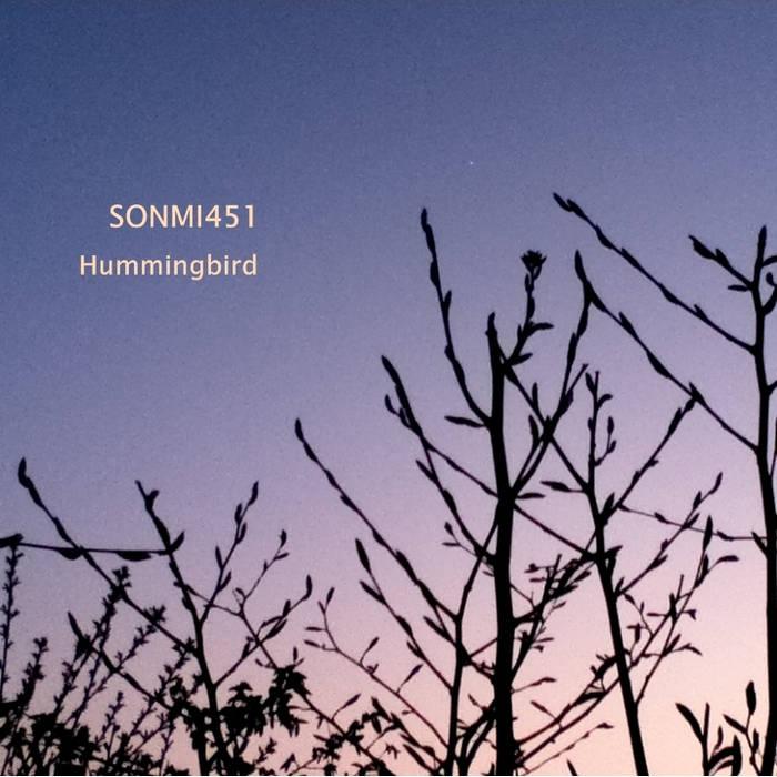 Hummingbird cover art