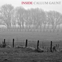 INSIDE CALLUM GAUNT cover art